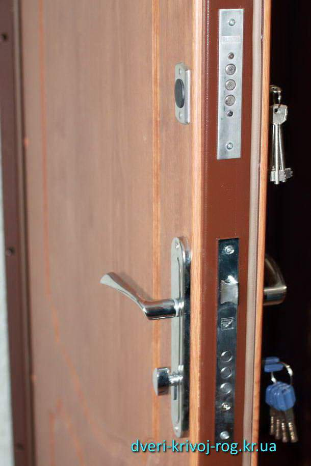 входные металлические двери в кривом роге Медиум