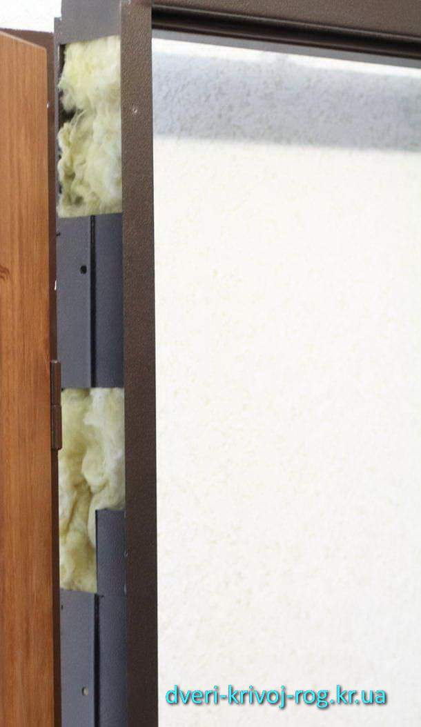 двери входные в кривом роге