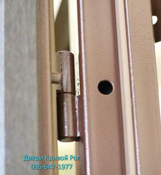 купить входные двери в кривом рогу